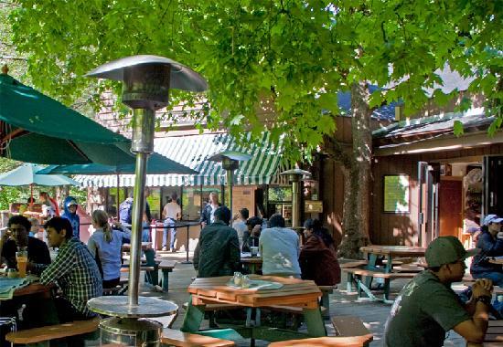 I found this picture on tripadvisor: http://www.tripadvisor.com/Restaurant_Review-g61000-d518489-Reviews-Curry_Village_Pizza_Patio-Yosemite_National_Park_California.html
